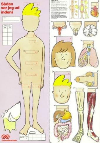Sådan ser jeg ud inden i, anatomiplakat